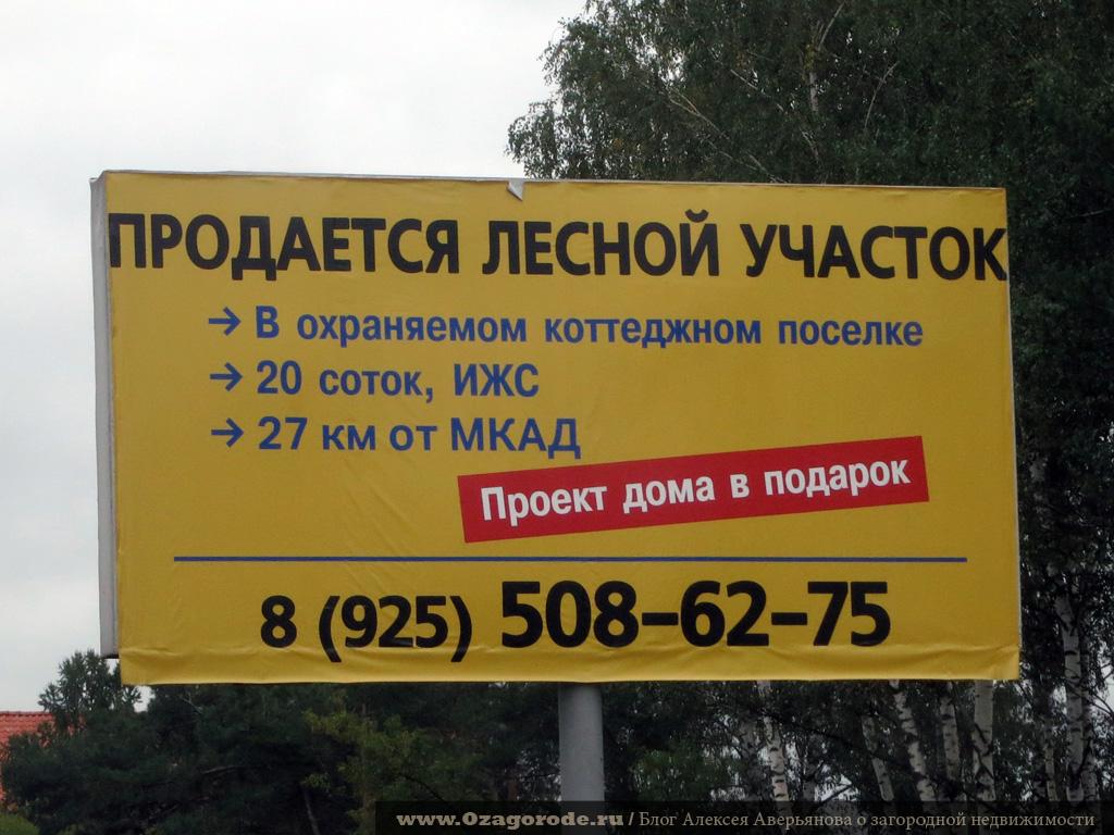 03 lesnoy_uchastok
