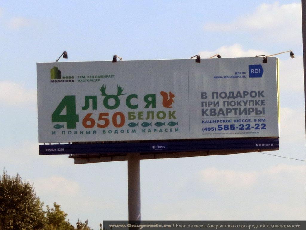 12 4losya_v_podarok