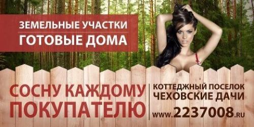 Sosnu_v_podarok